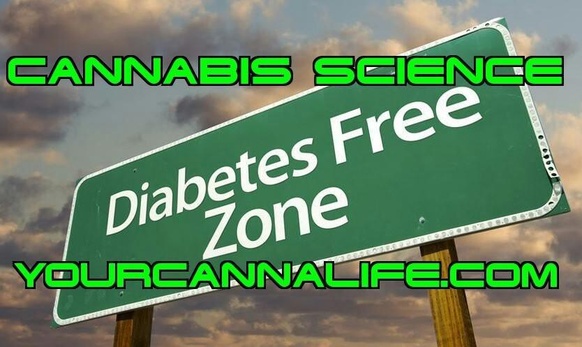 CANNABIS AND DIABETES