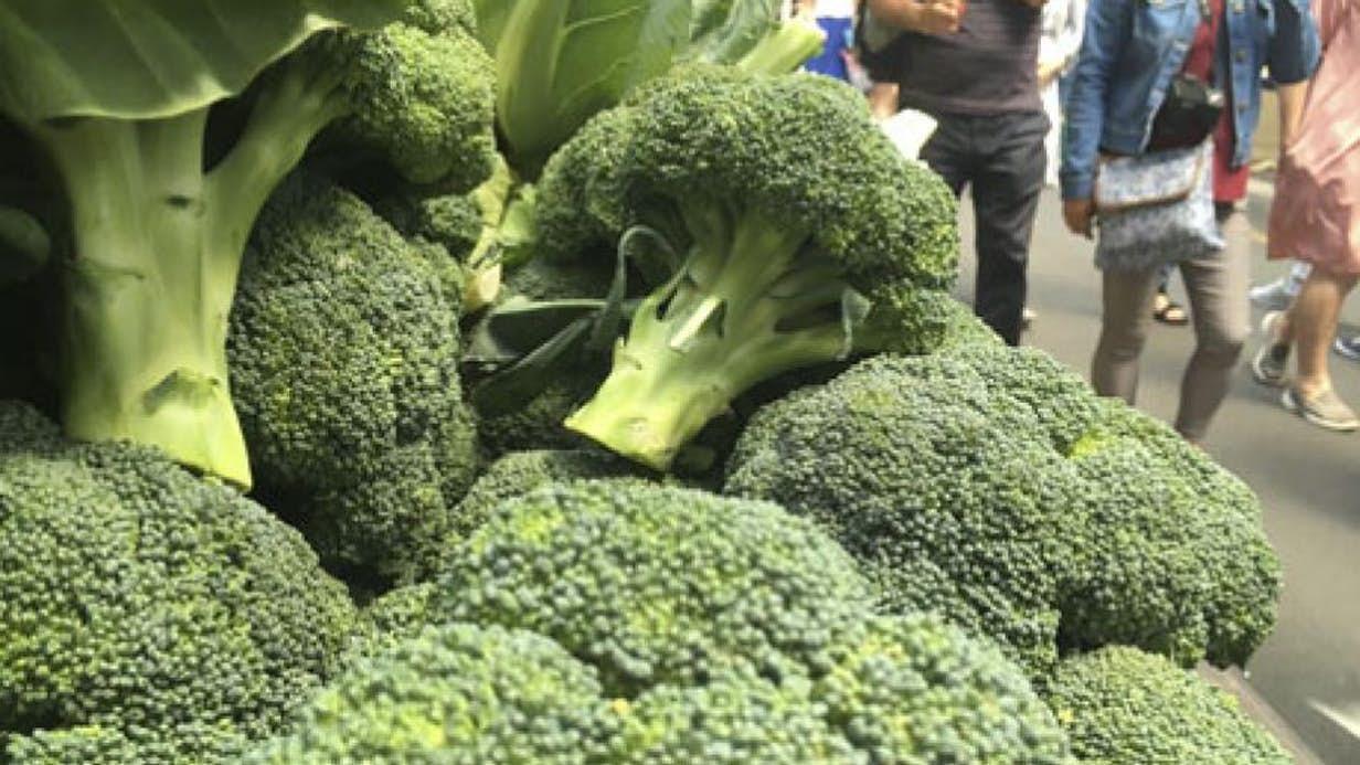 Broccoli Extract Diabetes