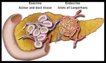 Hypertension And Diabetes Mellitus Type 2