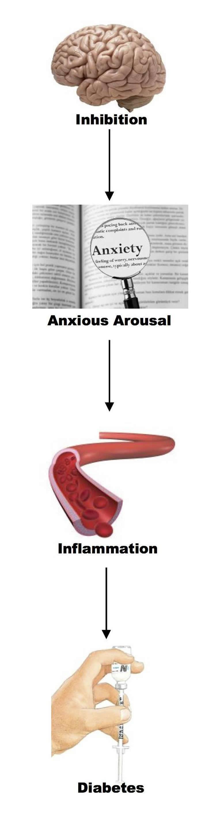 Researchers Detail Link Between Stress and Diabetes