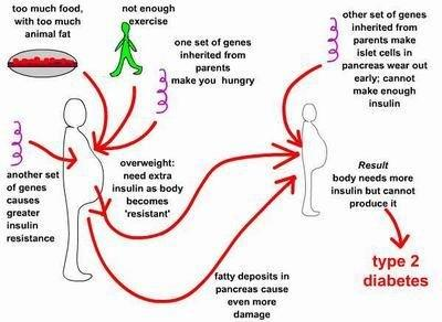 Symptoms Of Type 2 Diabetes In Young Adults