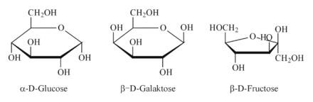 Structural Biochemistry/organic Chemistry/carbohydrates