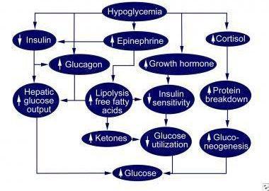 Newborn Low Blood Sugar Nicu