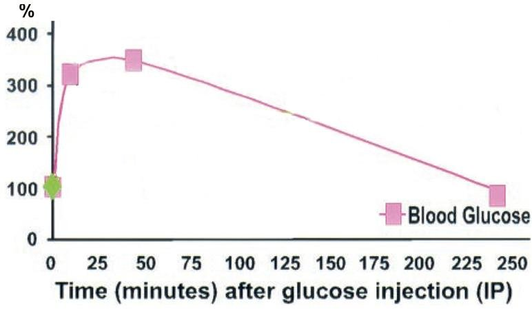 Glucose Tolerance Test In Mice
