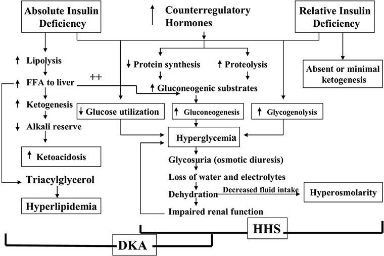 Etiology Of Diabetic Ketoacidosis