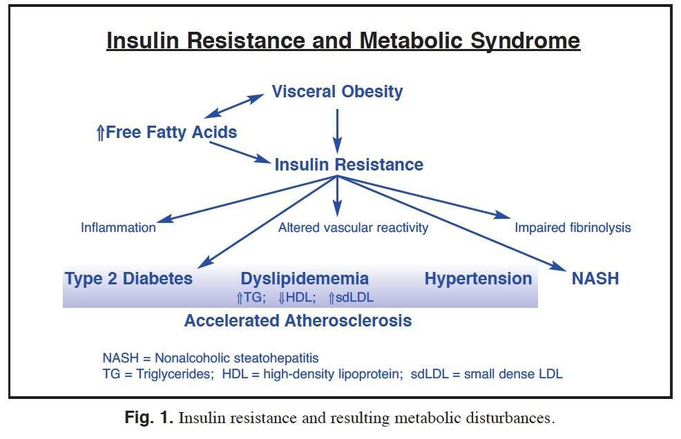 Reversing Insulin Resistance To Reduce Type 2 Diabetes