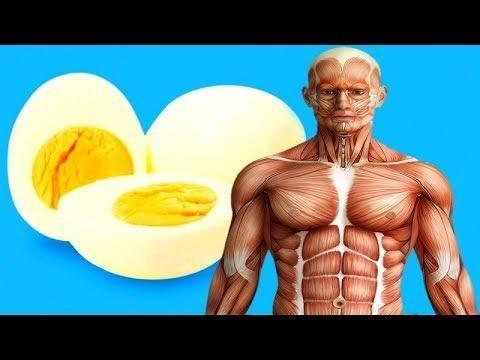 Can A Diabetic Eat A Fried Egg?