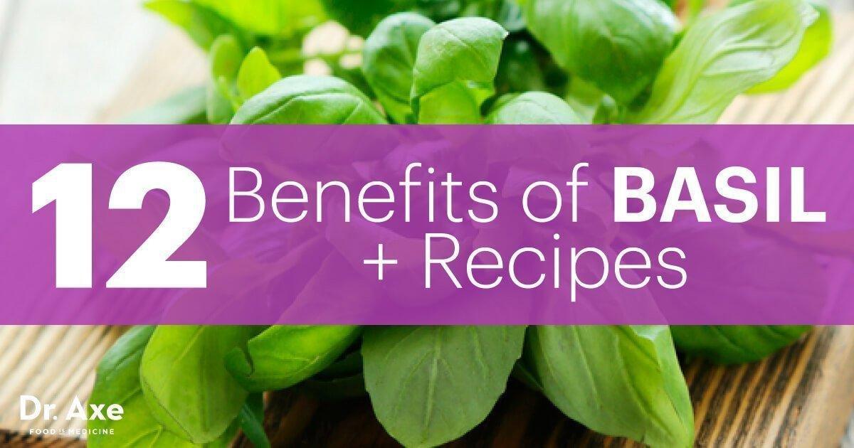 12 Benefits Of Basil + Recipe Ideas