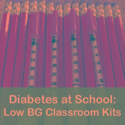 Type 1 Diabetes School Kit