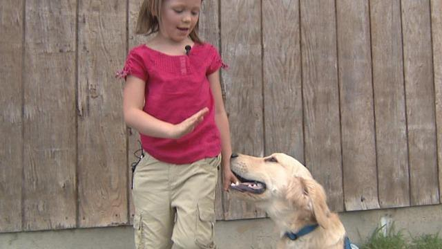 Service Dog For Diabetic Child