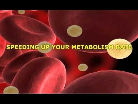 Resveratrol Diabetes Pubmed