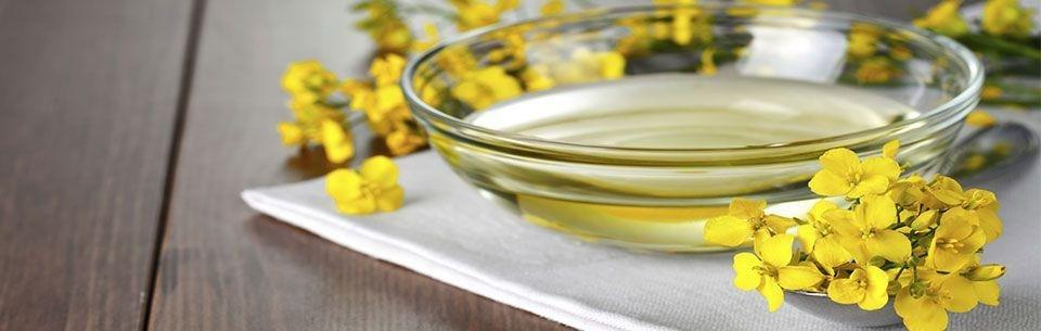 Is Canola Oil Good For Diabetics