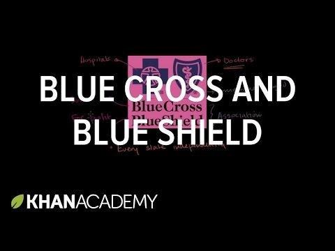 Blue Cross Blue Shield Blood Glucose Meter