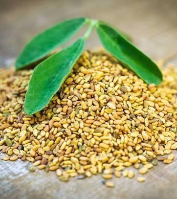Is Fenugreek Seeds Good For Diabetes?