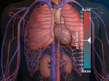 What Are The Signs Of Acidosis?