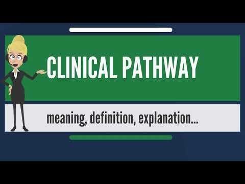 Director, Clinical Documentation Improvement Program