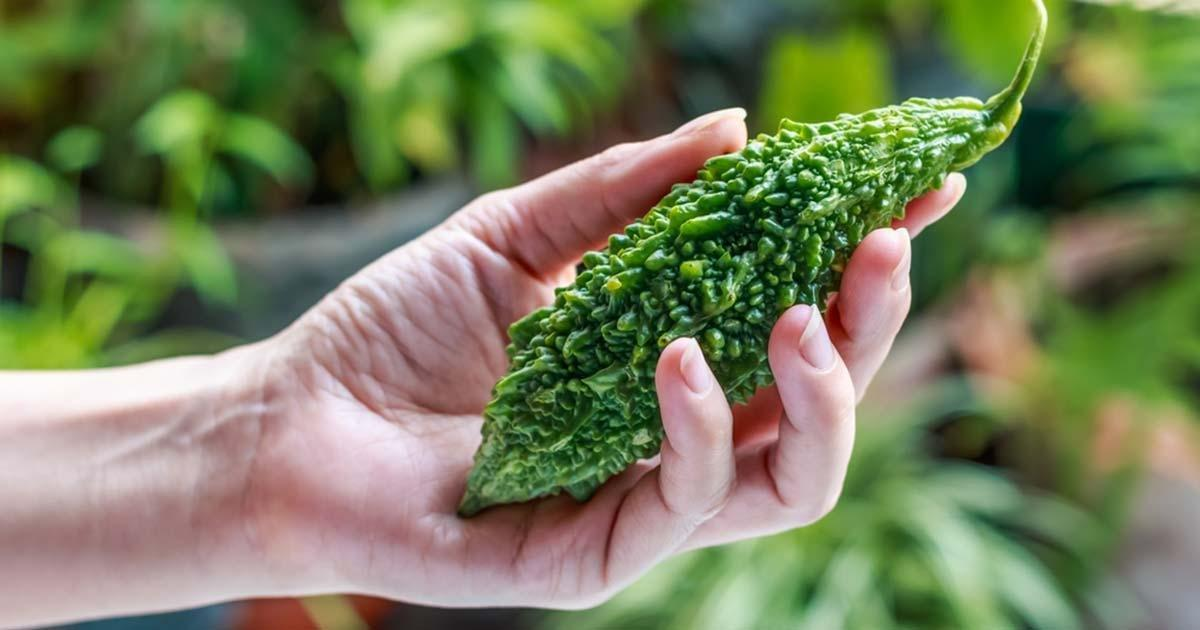 This Lesser Known Vegetable Can Help Prevent Diabetes and Breast Cancer