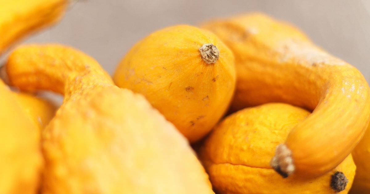 Can Diabetics Eat Squash?