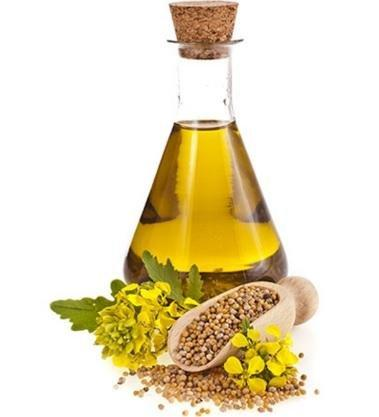 Mustard Oil For Diabetes