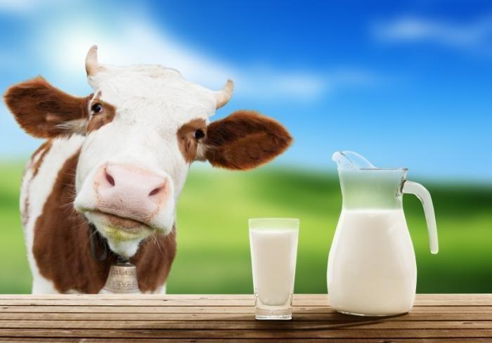 What Is The Best Milk For People With Diabetes?