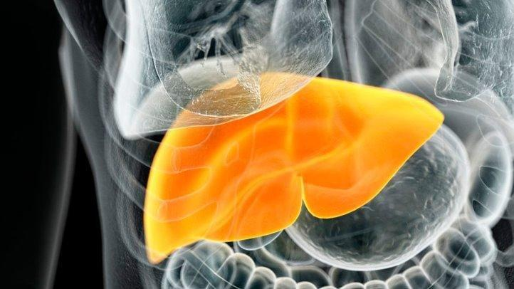 Can Liver Disease Be Caused By Diabetes?