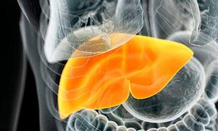 Is Diabetes A Disease Of The Liver?