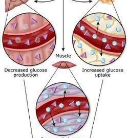Diabetic Seizure Low Blood Sugar