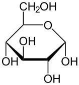 What Are Some Structural Similarities And Differences Between Glucose And Starch