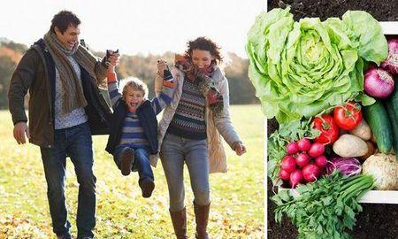Vegetable diet WILL beat diabetes: Meat-free lifestyle cures killer disease, experts claim