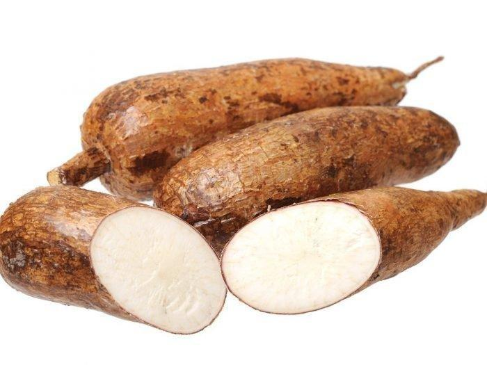 9 Amazing Tapioca Benefits