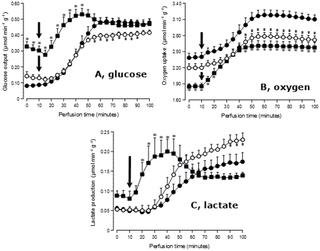 The Metabolic Responses To L-glutamine Of Livers From Rats With Diabetes Types 1 And 2