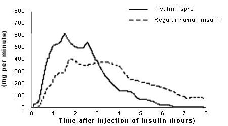Is Regular Insulin Fast Acting?