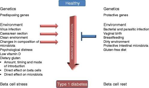 Gluten And Diabetes Type 1