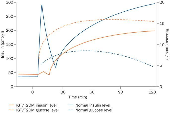 Emerging Treatments For Post-transplantation Diabetes Mellitus