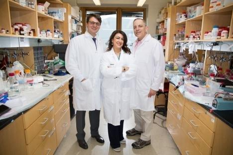 Artificial Pancreas Pancreatic Cancer