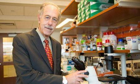 LI doctor leads study of Type 1 diabetes' effects on the brain