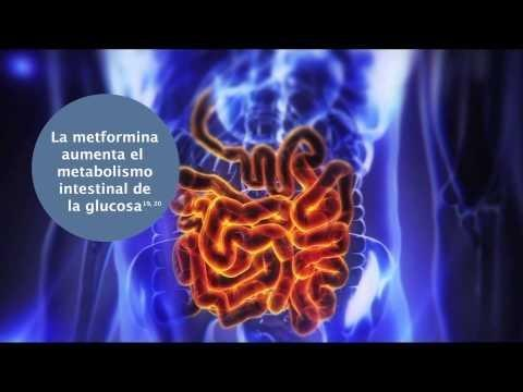 What Pharmaceutical Company Produces Metformin