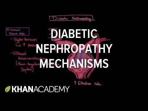 Classification Of Diabetic Nephropathy 2014