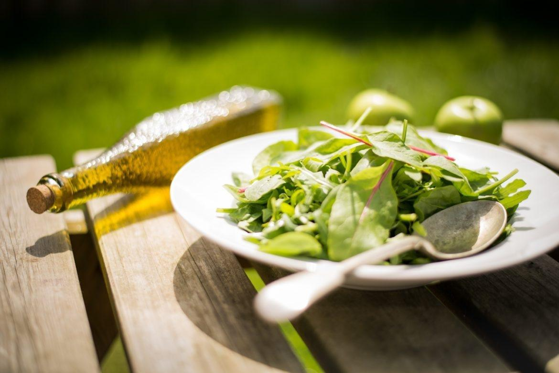 Article Response: Ketogenic Diet Vs. Atkins Diet