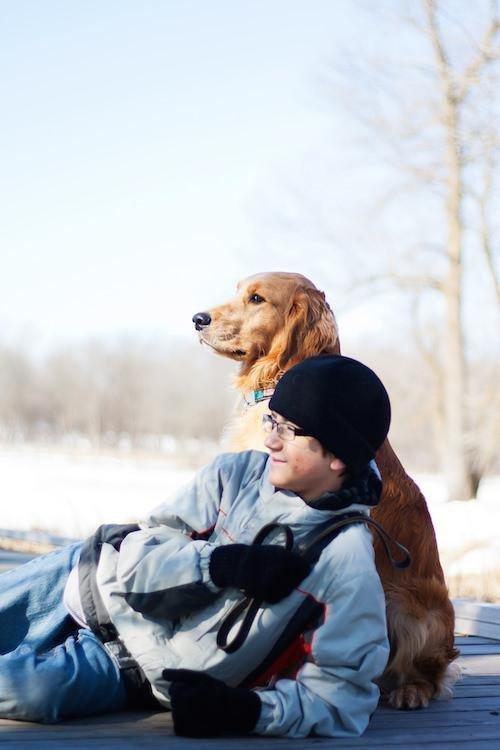 Diabetes Alert Dogs: What You Should Know