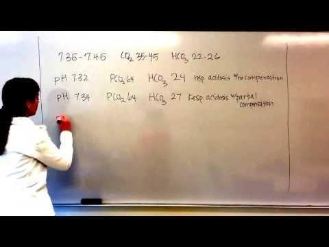 Partially Compensated Metabolic Acidosis Example