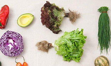 Recipes For Low Potassium Diabetic Diet