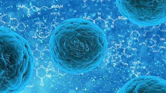5 Stem Cell Innovations From The Past Year, From Cancer Treatment To Diabetes Therapy