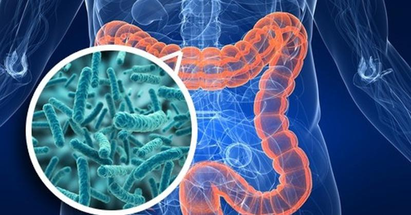 Microbiota Associated With Type 2 Diabetes And Its Related Complications