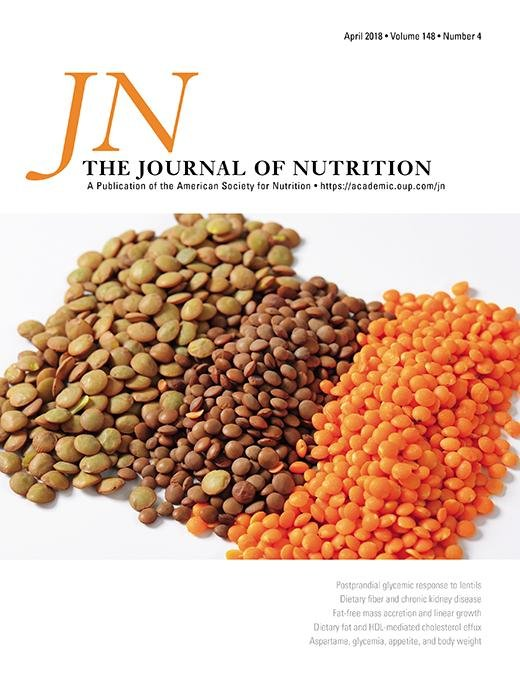 Dietary Protein Is Important In The Practical Management Of Prediabetes And Type 2 Diabetes