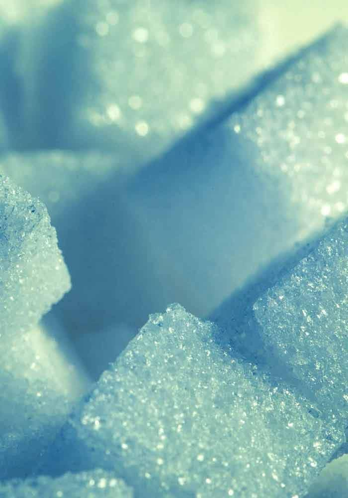 Potentials And Limitations Of Bile Acids And Probiotics In Diabetes Mellitus