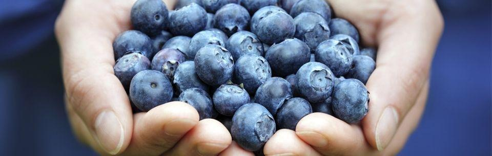 Blueberries One Of The Best Fruits For Diabetes | Diabetescare.net