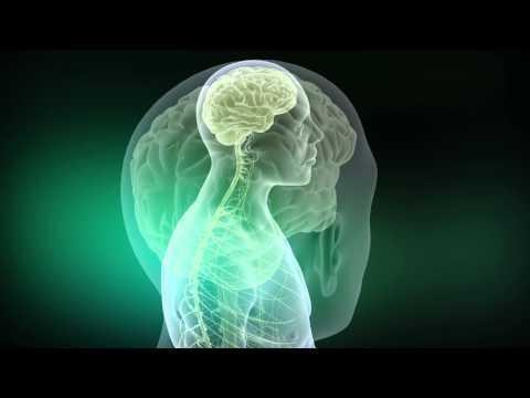Spinal Cord Stimulation Archives - Neuronews International