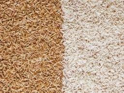 Brown Rice Diabetes Study