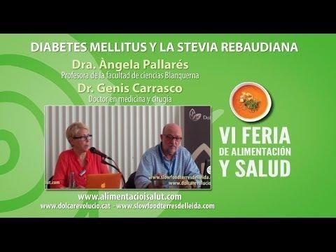 Stevia And Diabetes Dangers
